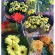 Dzięki-kwiatom-nasz-dom-stanie-się-na-Wielkanoc-ożywiony-i-wiosenny-Fot.-pozachodzie.pl_