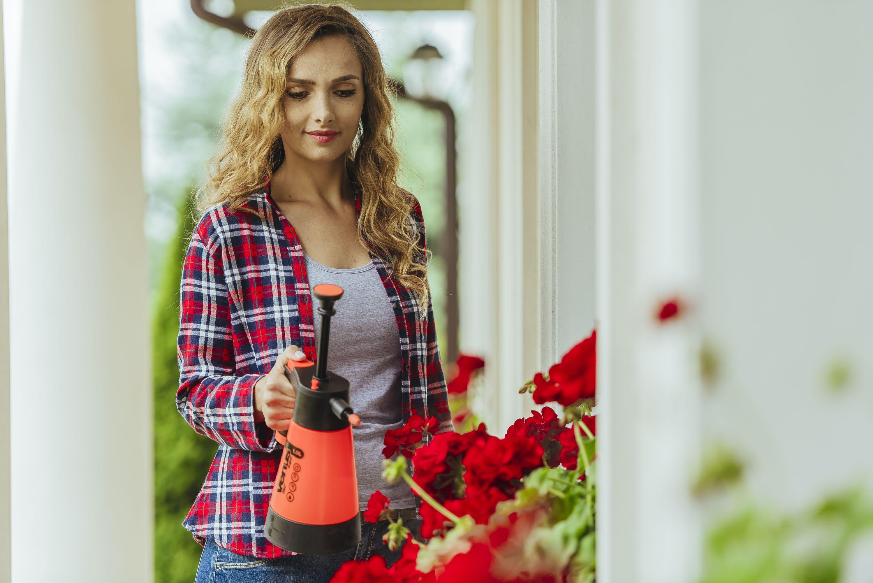 Domowy ogródek – jak o niego dbać?